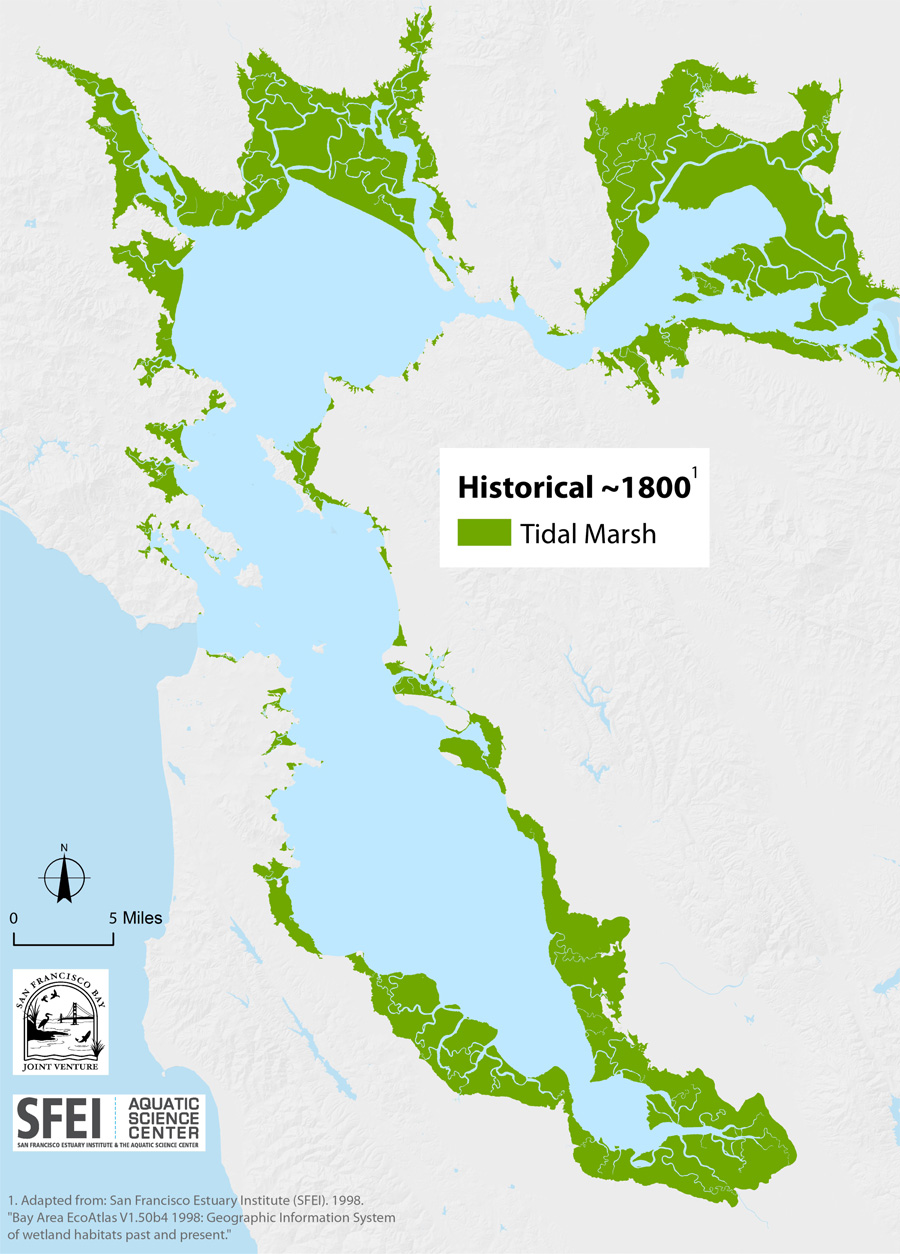 Baylands Map Historical